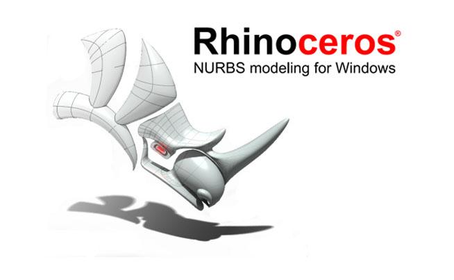 Rhinocero 7